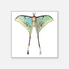 """Luna moth Square Sticker 3"""" x 3"""""""