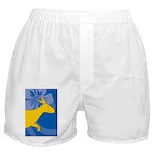 Kangaroo Ipad Mini Case Boxer Shorts