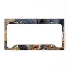 IMG_1449 License Plate Holder
