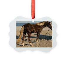 Rocky and Stroll Beach Ornament