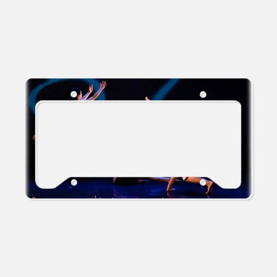 Dust... Fib Sequence License Plate Holder