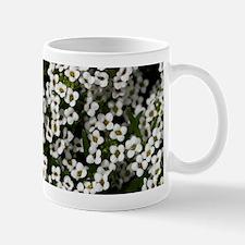 White Alyssum 14x6 Mug