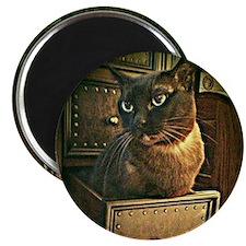 Kiwi the Burmese Cat Magnet