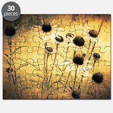 Vintage daisies Puzzle