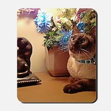 Tonkinese Cat I Mousepad