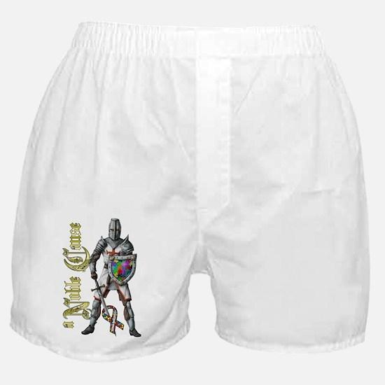AutismKnightiPadMini Boxer Shorts