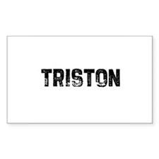 Triston Rectangle Decal