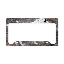 """""""Lost  Wolf"""" License Plate Holder"""