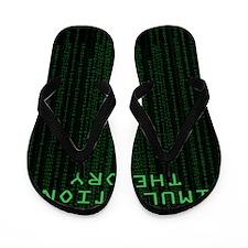 Simulation Theory Flip Flops