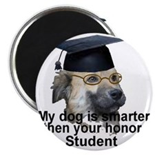 honor student Magnet