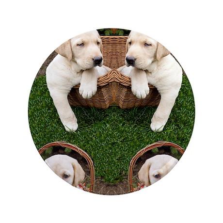 """Cute Lab Puppy 3.5"""" Button"""