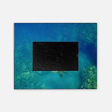 Sea turtle Picture Frame