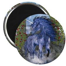 bu2_Square Compact Mirror Magnet