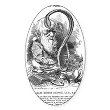 Cartoon of Charles Darwin Decal