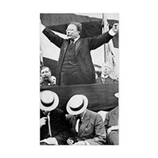 President Theodore Roosevelt m Decal