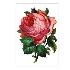 Victorian Red Rose Postcards (Package of 8)