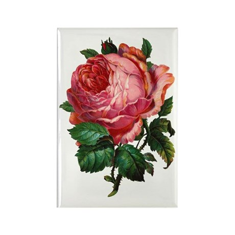 Victorian Red Rose Rectangle Magnet