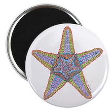 Starfish Squared Magnet