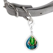 St. Patrick pointing at sna Small Teardrop Pet Tag