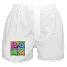 Zoe the Havanese Boxer Shorts
