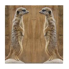 Meerkat Tile Coaster
