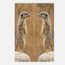 Meerkat Postcards (Package of 8)