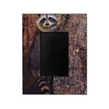 Raccoon Picture Frames