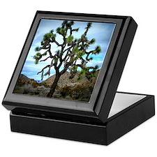 Joshua Tree Keepsake Box