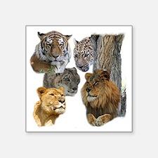 """The Big Cats Square Sticker 3"""" x 3"""""""