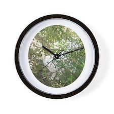 Beautiful Klea Wall Clock