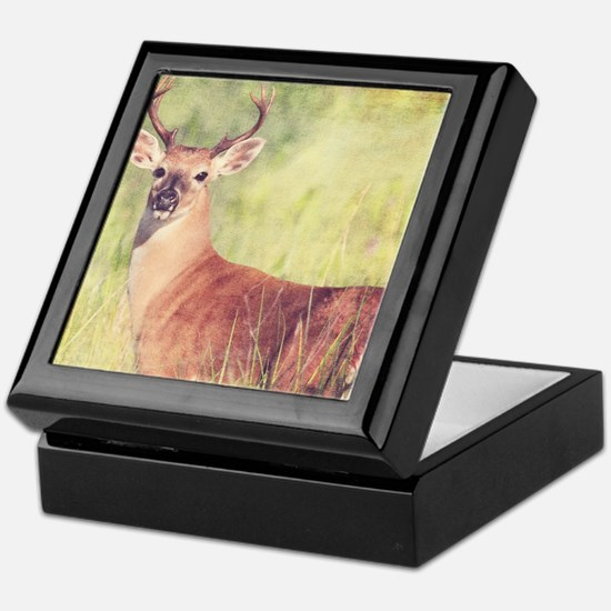White Tailed Buck Keepsake Box