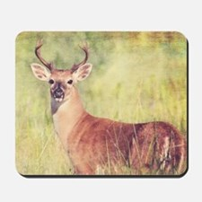 White Tailed Buck Mousepad