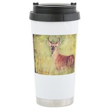 White Tailed Buck Travel Mug