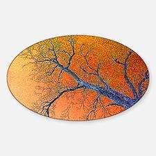 Bare Oak Decal