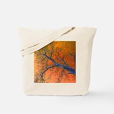 Bare Oak Tote Bag
