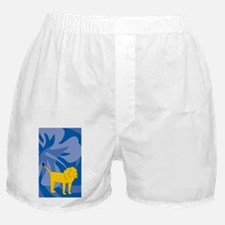Lion 3 X 5 Area Rug Boxer Shorts