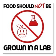 """Not Grown In A Lab Square Car Magnet 3"""" x 3"""""""
