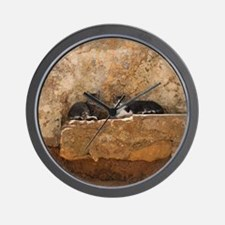 Cats in Abandoned House Wall Clock