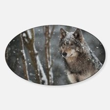 Snowy Lone Wolf Decal