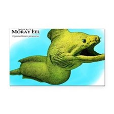 Giant Moray Eel Rectangle Car Magnet