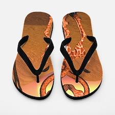 gl_l_cutting_board_820_H_F Flip Flops