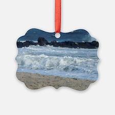 Ocean Beach Rocks Cape May Shower Ornament
