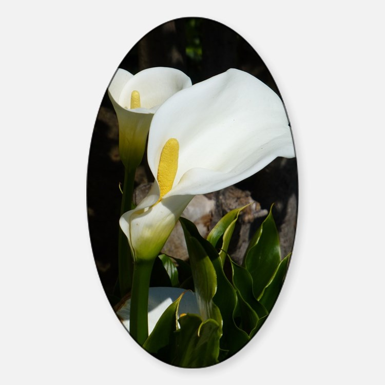 White Lily Decal