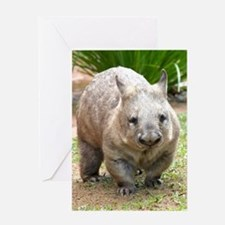 Common wombat - vombatus ursinus Greeting Card