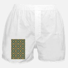 Elegant Aqua and Orange Boxer Shorts