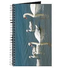 SW2 Journal