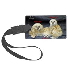 2013 Owlets First Banding Luggage Tag