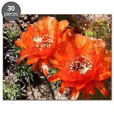 Cactus Bloom Puzzle