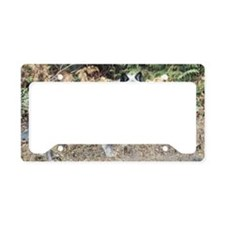 """""""Black Male Timber Wolf"""" License Plate Holder"""