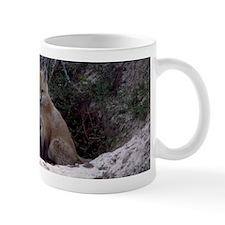 Red Fox Kit Mug